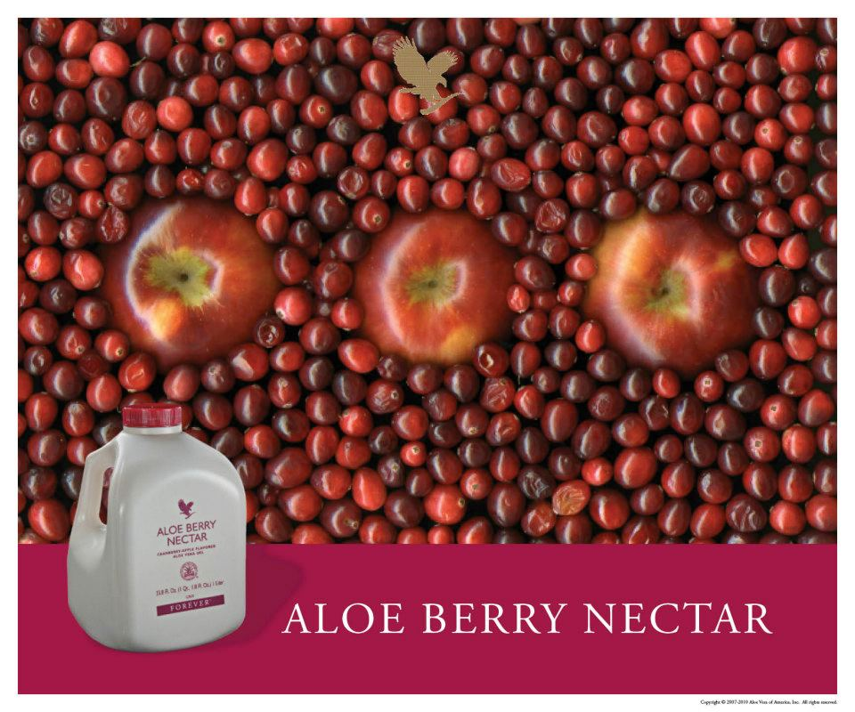 Aloe Berry Nectar(Bevande a base di aloe)