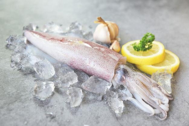 calamaro-crudo-su-ghiaccio-con-l-insalata-aromatizza-l-aglio-del-limone-sul-piatto-bianco-polpo-o-seppia-di-calamari-freschi-per-cibi-cotti-al-ristorante-o-al-mercato-del-pesce_73523-3725.jpg