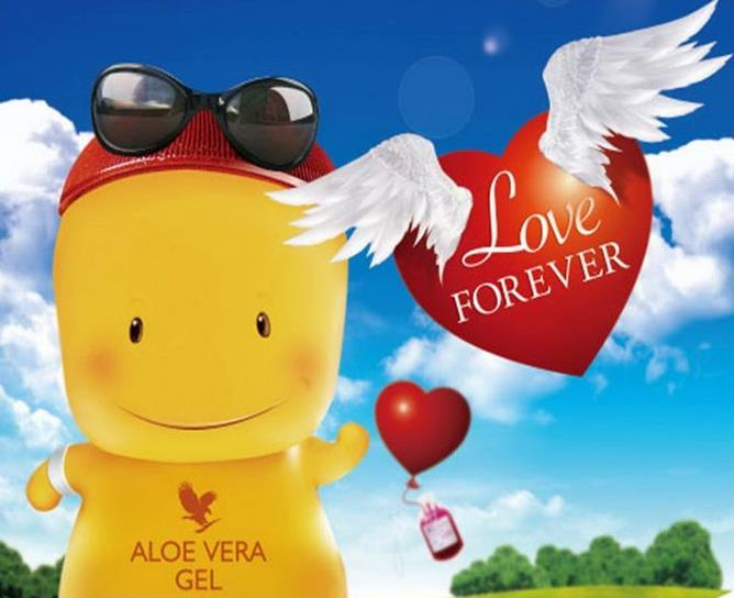 LAVORA PART-TIME CON L' E-COMMERCE FOREVER LIVING PRODUCTS