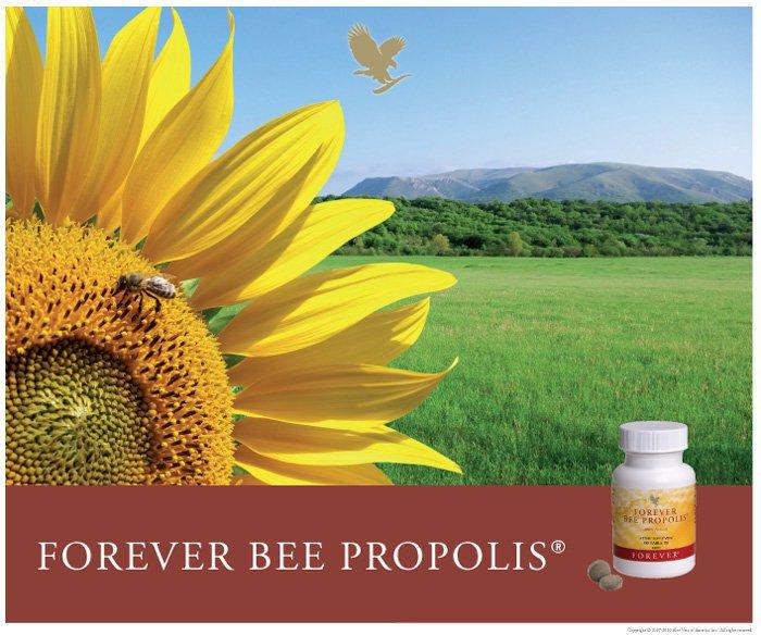 Forever Bee propolis(prodotti dell'alveare)