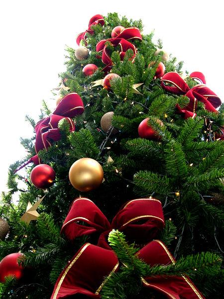 Hai già pensato ai regali di Natale?